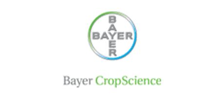 bayer-logo-450x198